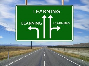 different paths to learning