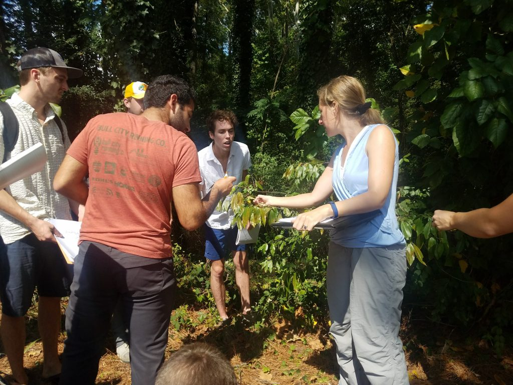 Nicolette Cagle and students examine a small tree.